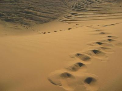 khutbah-jumat-dan-merenungi-pengorbanan-nabi-ibrahim